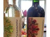 Don't Wait Until Earth These Organic Wines from Veramonte Vineyards