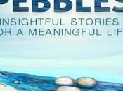 Zohar Ginosar Pebbles: Insightful Stories Meaningful Life #BookReview #BookChatter #Books