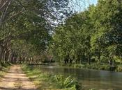 Languedoc, France: Cycling Canal Midi