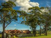 Enjoy Yarra Valley's Virtual Tours