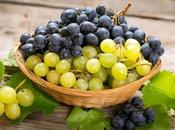 Compost Grapes? (And Grape Stems?)