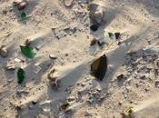 Glass Bottles Sold Beach Illegal