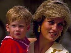 Prince Harry Blame Should Parents?