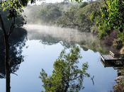 Moleside Camp Battersbys, Great South West Walk, Victoria.