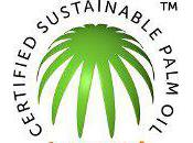 Trademark Marks Turning Point Sustainable Palm
