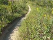 Murphy-Hanrehan Mountain Biking Trail