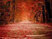 Taurus Rising Monthly Astrological Forecast October 2012