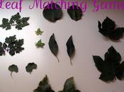 Leaf Matching Game