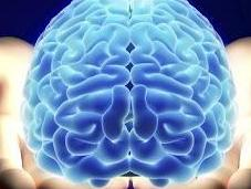 Does Brain Research Obscure Addiction's Root Causes?