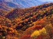 Knoxville Events This Fall