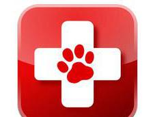 Haus Paws iPhone Apps Dogs!