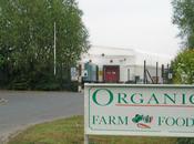Argument Organic Foods