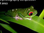 2012 Wildlife Photography Competition Results
