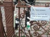 Pets Hurricane Sandy