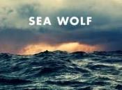 Wolf World Romance