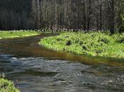 2011 July 20th Family Vacation Cascade Falls, Rocky Mountain National Park