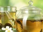 Green Tea: Miracle Drink Your Low-carb Diet
