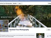 Knotted Tree Photography Update (Black Friday Sale)