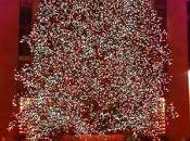 Christmas Tree..Oh Tree!