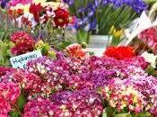 Creative Ways Flowers