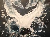 Heart-shaped Seahorsey Strangeness