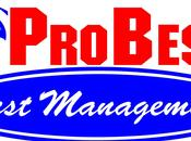 ProBest Pest Management Tips Keep Those Bugs Out!