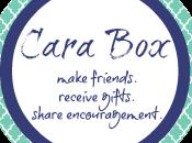 November Cara Reveal {Link