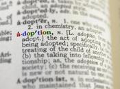 Making Adoption Decision
