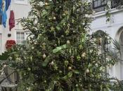 Christmas Longwood Gardens Pont House