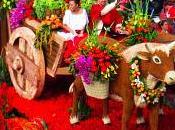 Gabriel Centennial Rose Parade Float Wins Directors' Trophy