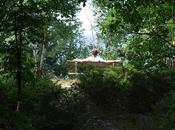 Georgian July 2011/Memorial Bench