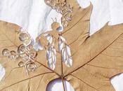 Amazing Leaf Lorenzo Duran