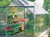 Best Greenhouses
