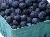 Savvy's Yummy Blueberry Muffins