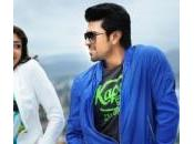 Naayak Days Collections Reports