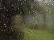 Rainy Holiday Monday