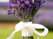 Lavender World, Bride! Wedding Ideas Pictures