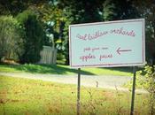 Ontario Apple Picking Carl Laidlaw Farms