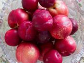 Summer Stone Fruits: Poached Plums