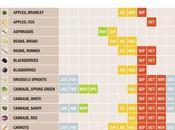 Nutrition: Seasonal Eating Chart