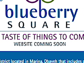 Blueberry Square Dbayeh: Open