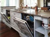 Second Dishwasher?