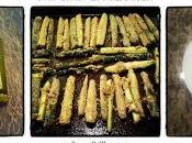 Meatless Monday: Oven Baked Zucchini Fries