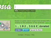 Search Engine Protect Rainforest