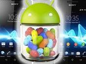 Report: Sony Xperia Android Jelly Bean Flavor