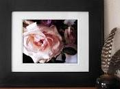 Shabby Chic Pink Rose with Secret Heart