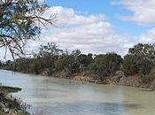 Darling River Isn't Cotton Country