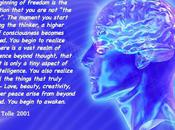(Cosmic) Consciousness