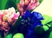 Flowers:: Instagram-ed