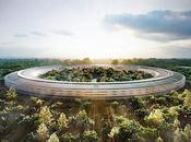Boards: Apple